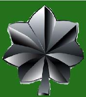 lieutenant%2Bcolonel